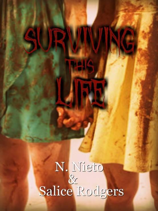 STL E Book Cover