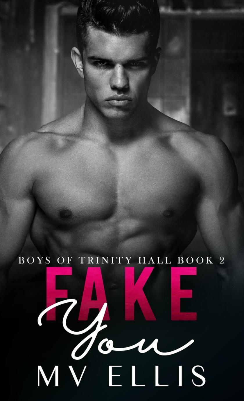 Fake You Ebook Cover
