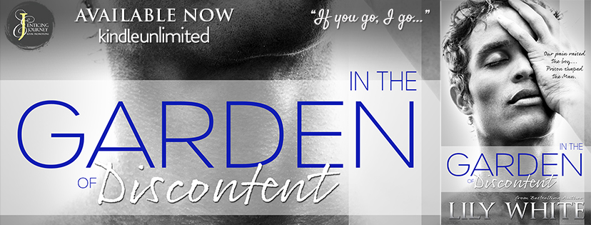 Happy Release Day & Review!! In The Garden of Discontent by Lily White